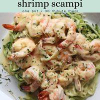 Creamy Shrimp Scampi