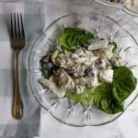 Pecan Dill Chicken Salad