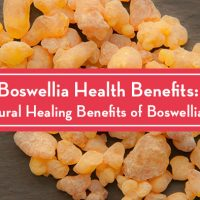 Boswellia Health Benefits: The Natural Healing Benefits of Boswellia Serrata
