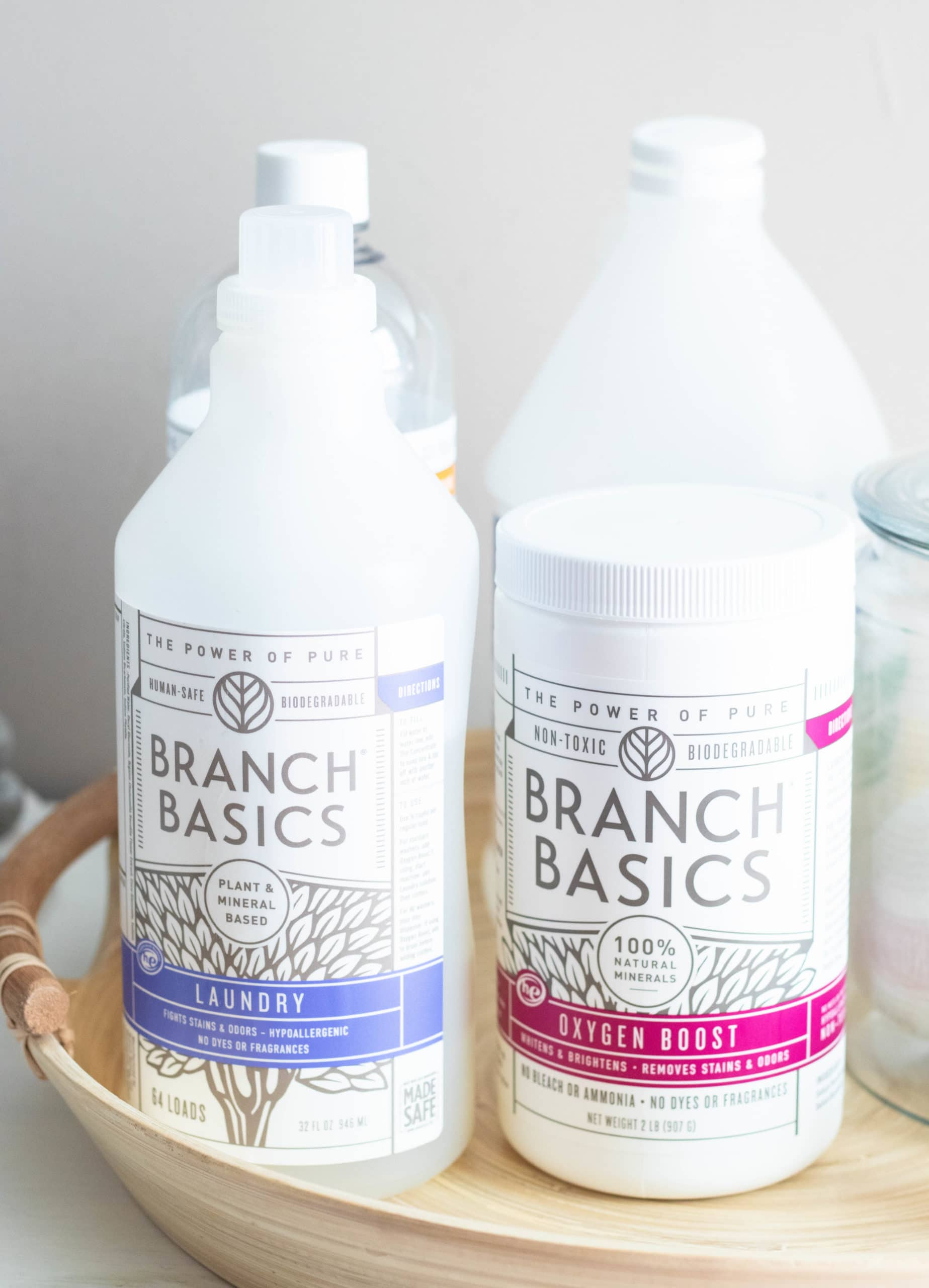Natural Laundry Detergent Branch Basics Review
